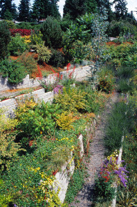 Garden design for steep slope